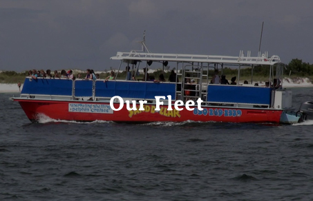 Our Snorkeling Boat Fleet