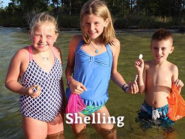 Shelling Tour