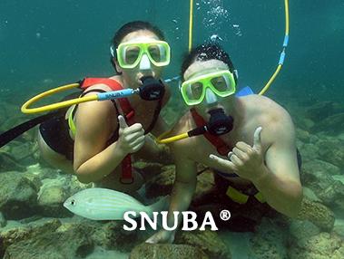 Snuba Tour